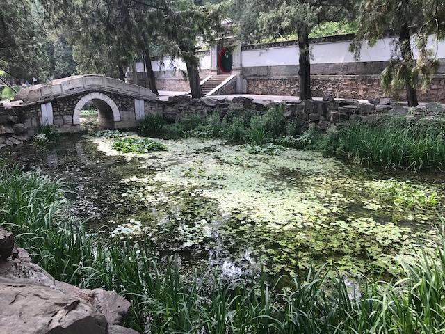 190605_china_03
